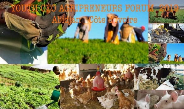 YOUTH CEO AGRIPRENEURS FORUM 2019