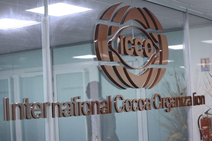 Agriculture-Cacao : un accord pour augmenter les prix trouvé, (ICCO)